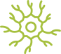 autonomic neuropathy icon